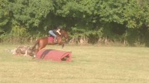 travis-jumping